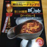 神田カレーグランプリ優勝Bondyチーズカレー食べてみた